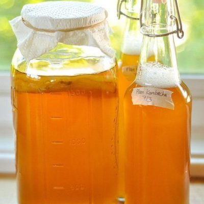 Easy Kombucha Tea